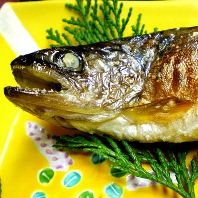 就活でも見られている「魚の食べ方」 きれいに食べれば「高評価」?
